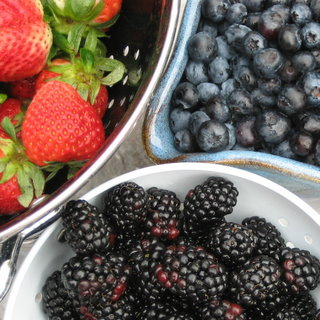 berries011